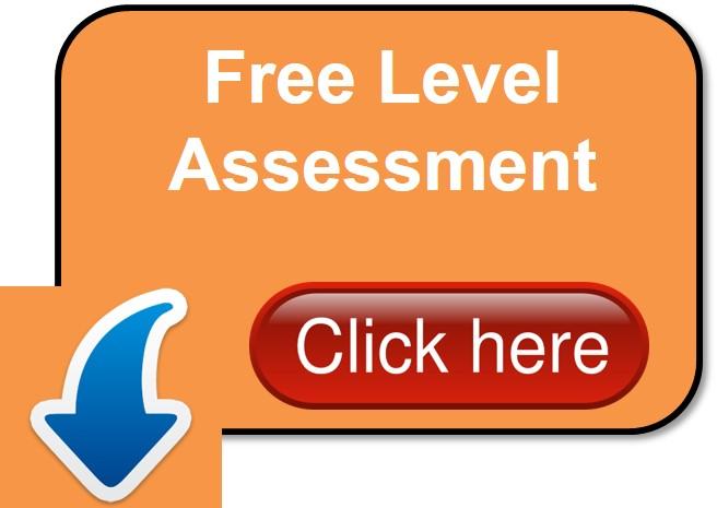 Level Assessment - orange